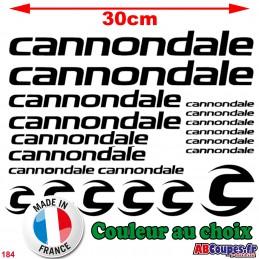 Kit Cadre Cannondale