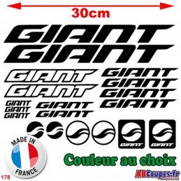 Kit Cadre Giant